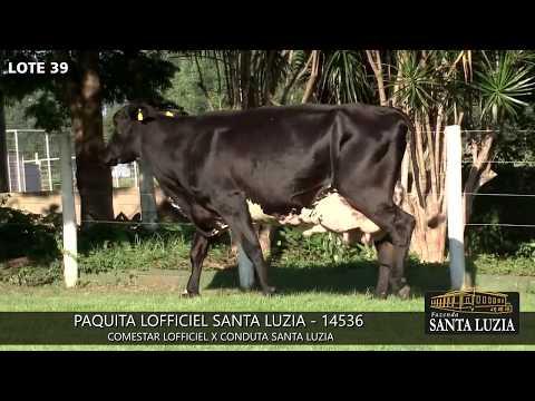 SANTA LUZIA   LOTE 39