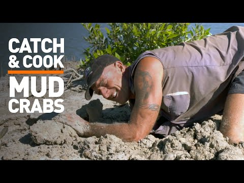 Catch & Cook: Mud crabs in the Northern Territory, Australia!
