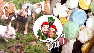 Bulldog meetup & LUSH Bathtime ❄ Vlogmas 7 Thumbnail