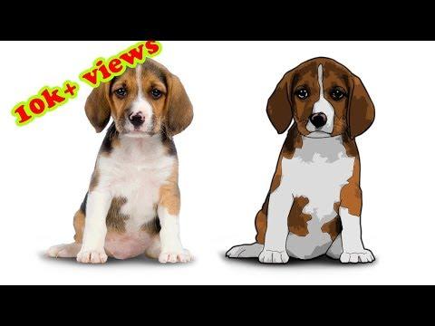 Photoshop Tutorial: Cartoon Effect On Pet Portrait |  Filter Effect On Dog Portrait |