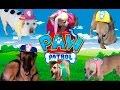 LA PATRULLA CANINA DE VERDAD!!! paw patrol español! cachorros en la vida real. Paw patrol real life