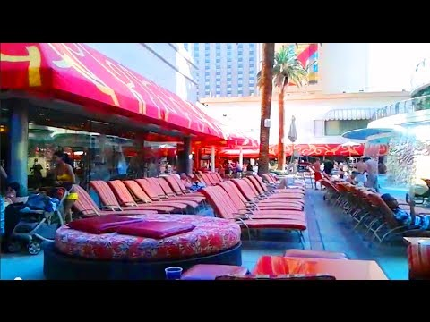 Vegas Pools Downtown - Golden Nugget Pool & Shark Tank area