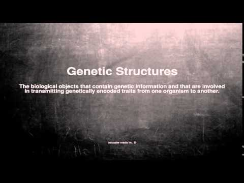 Medical vocabulary: What does Genetic Structures mean