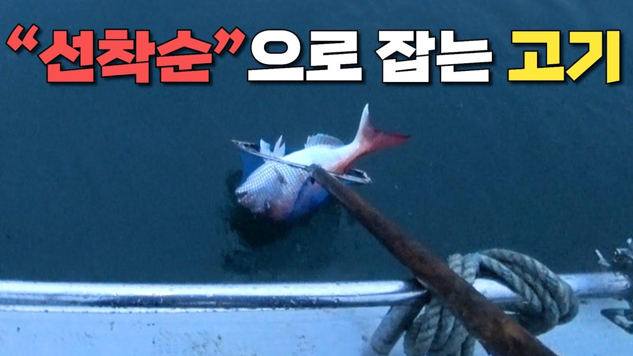 선외기 참돔 꼬라박기 낚시하는 방법 [박과장TV]