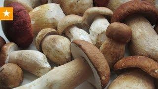 видео Сушка грибов в электросушилке: как правильно сушить грибы