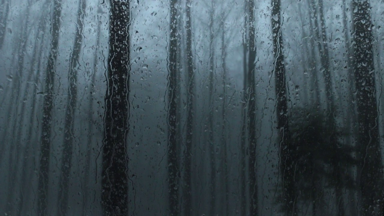 sound of rain on a window 1 hour window in a dark forest with rain storm youtube. Black Bedroom Furniture Sets. Home Design Ideas