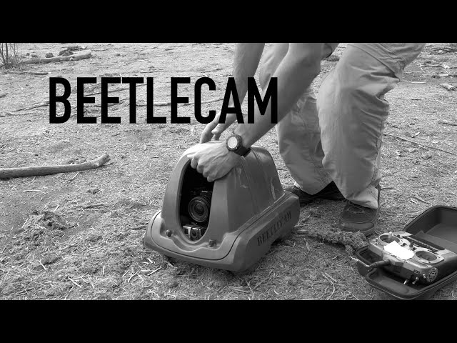 BeetleCam in Land of Giants