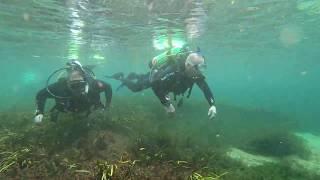 Rainbow River Dive certification