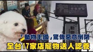 「動物王國」亡國了 全台17家倒閉關門 | 台灣蘋果日報