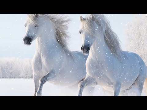 """Peaceful Soothing Relaxing Instrumental Music, Meditation Nature """"Winter Dr"""