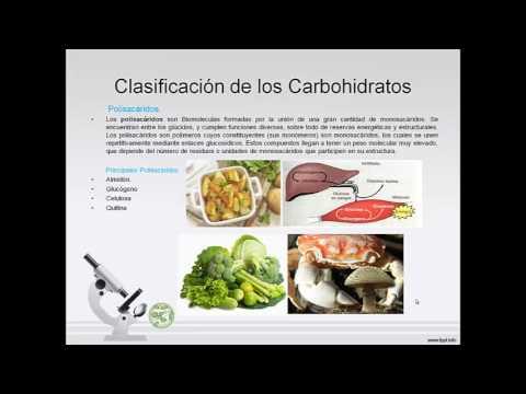 Biomoleculas Organicas Juan Agudelo