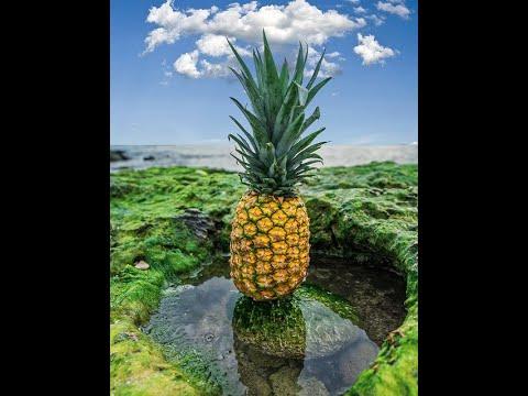 15 Proven Health Benefits of Pineapple