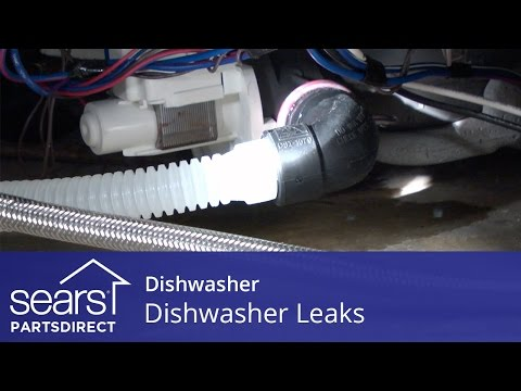 dishwasher-leaks