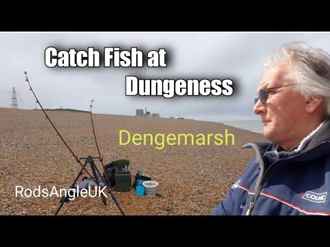 Catch Fish At Dungeness: DENGEMARSH