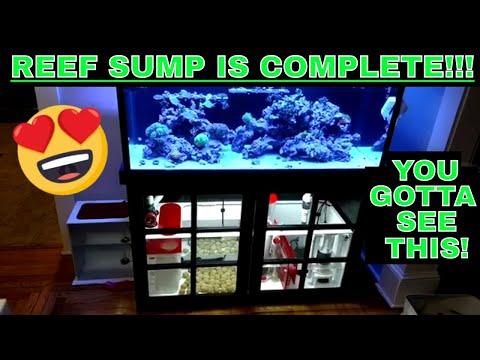 Custom Acrylic Sump - Full Equipment Update - My Saltwater Aquarium
