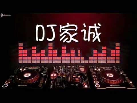 DJ 家诚 下定决心忘记你 2015