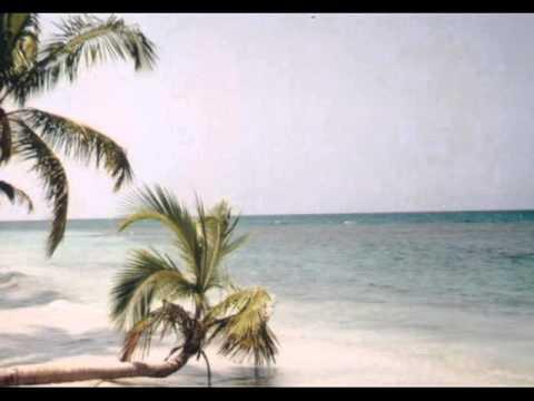 Vacances sous les tropiques poster