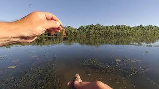 Спиннинг на Оке!Рыбалка в Рязанской области! Отводной поводок!
