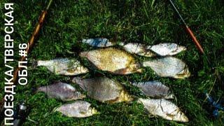 Рыбалка на Верхней Волге. Шнурки на воблер. Рыбалка с лодки. Шикарная природа.