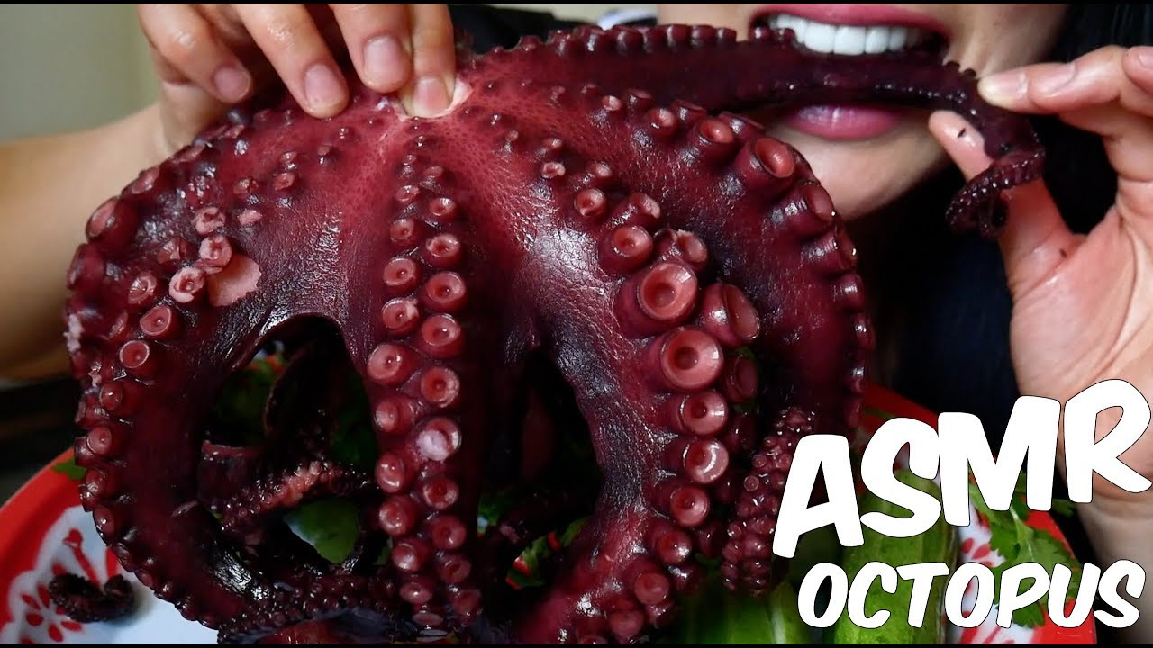 Asmr Giant Octopus À¸›à¸¥à¸²à¸«à¸¡ À¸à¸¢ À¸à¸© Chewy Eating Sounds No Talking Sas Asmr Youtube You'll find a variety of asmr videos covering numerous triggers. asmr giant octopus ปลาหม กย กษ chewy eating sounds no talking sas asmr