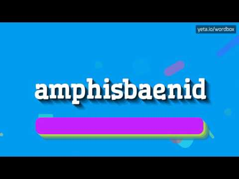 AMPHISBAENID - HOW TO PRONOUNCE IT!?