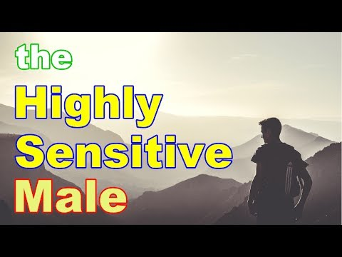 The Highly Sensitive Male