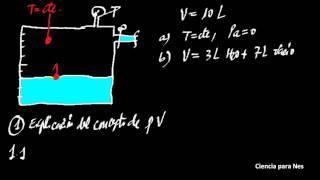 Fisica - Presion de vapor liquido puro 01