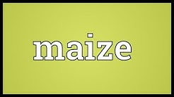 Maize Meaning