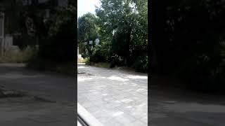 Овча купел София