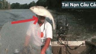 10 tai nạn hài hước câu cá có thật bạn có tin không | Lists 10 sự thật