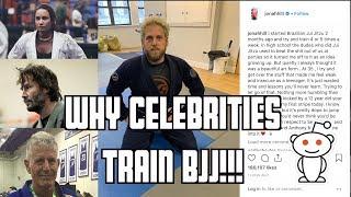 Baixar Why Celebrities Train Brazilian Jiu Jitsu!!!