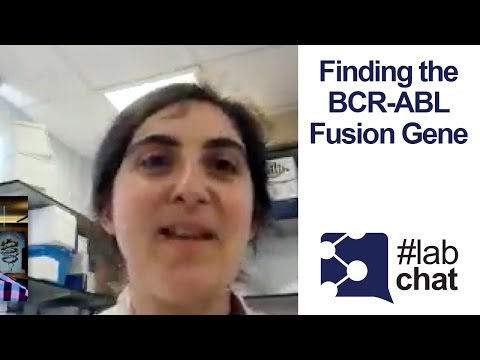 Detecting CML (Chronic Myeloid Leukemia) w/ Digital PCR | #LabChat
