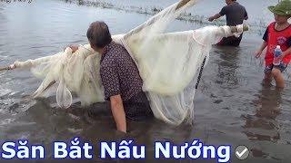 Bác Sáu bắt cá quá trời - gặp ổ trê con | SBNN miền tây 215