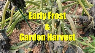 Early Frost 2017 in North Idaho Prompts Fall Garden Harvest