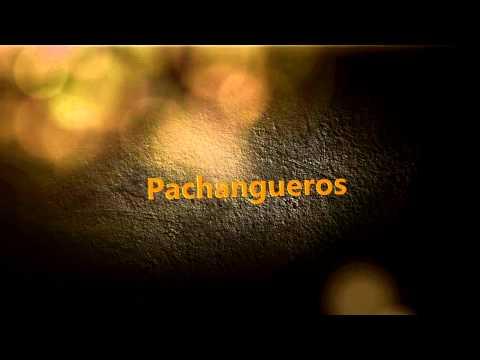 Panchanguero Discomovil Karaoke