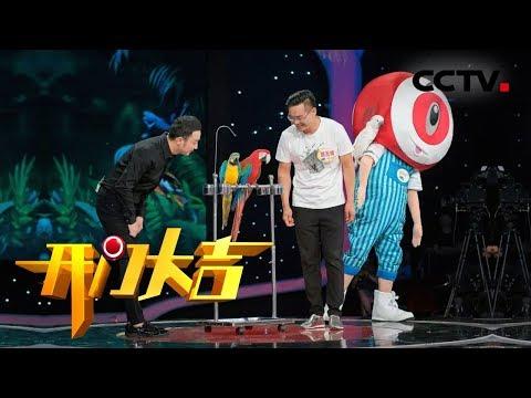 《开门大吉》 20181112 我的萌宠朋友| CCTV综艺