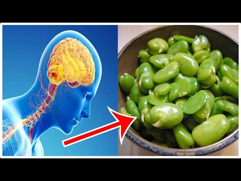 Parkinson's Disease Healing with Fava Beans | Parkinson's Disease Treatment