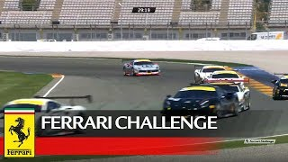 Ferrari Challenge Europe - Valencia 2017, Coppa Shell Race 1