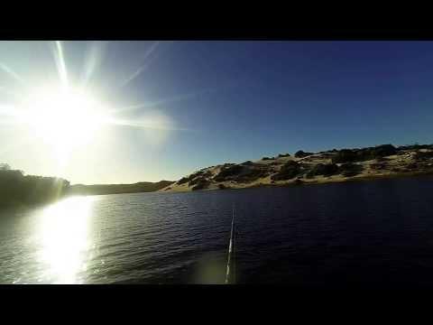 Moore River Moore Bream