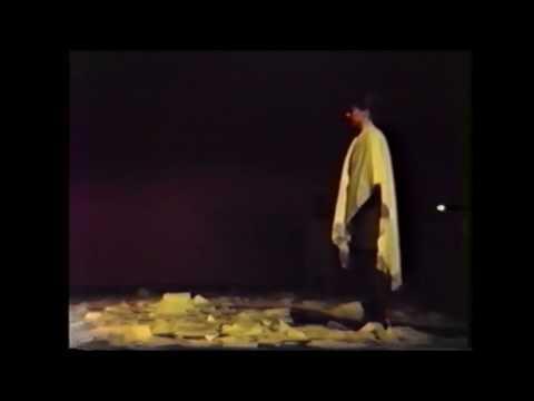 'n Meeuw, Anton Tsjechov, vertaling en regie Alain Pringels, de schizo's 1994