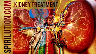 ★Kidney Function Repair, Cleanser & Rejuvenator ★ Frequencies Subliminals - Quadible Integrity