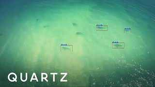 A drone that prevents shark attacks