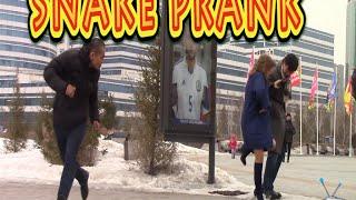 ► Пранк. Змея гуляет по Астане / Epic Snake Prank - Astana city