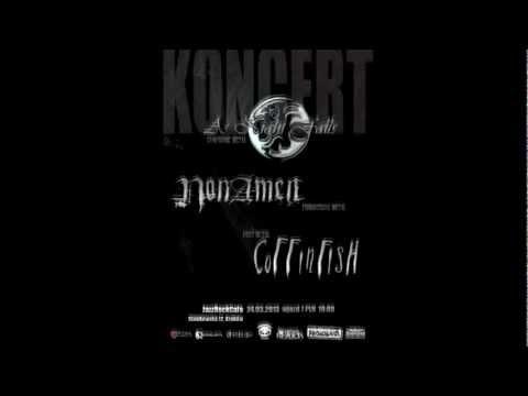 Trailer koncertowy - 24.03.2013 - Jazz Rock Cafe - Kraków