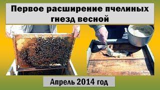 Пчеловодство ☆ Первое расширение пчелиных гнезд весной ☆ Начало апреля