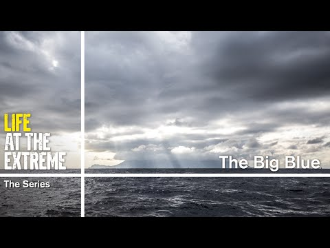 Life at the Extreme - Ep. 24 - 'The Big Blue' | Volvo Ocean Race 2014-15