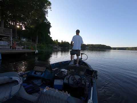 Lake Chesdin Bass Fishing Weed Edges