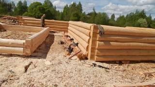 видео Строительство сруба из бревна в лапу 6х6