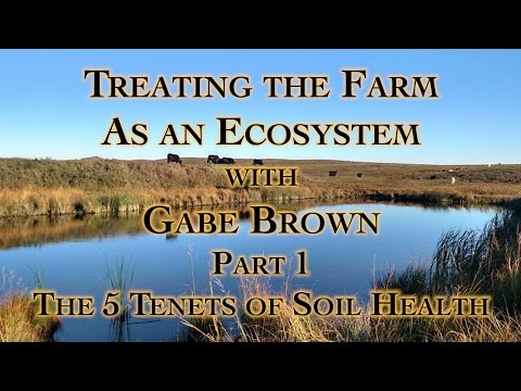 Treating the Farm as an Ecosystem with Gabe Brown Part 1, Th