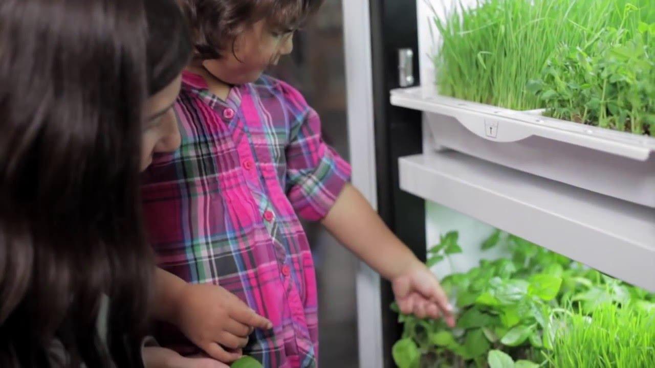 Automated undercounter garden promises zero-mile micro